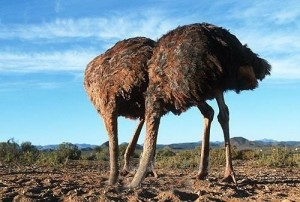 BBC's ostrich approach to terror in Judea & Samaria continues